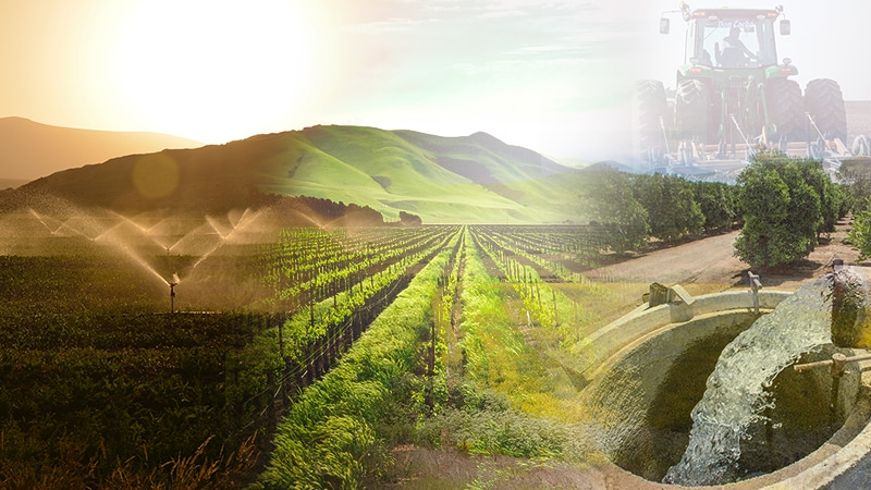 Infrastructure Management Water Supply California Agricultural Workers